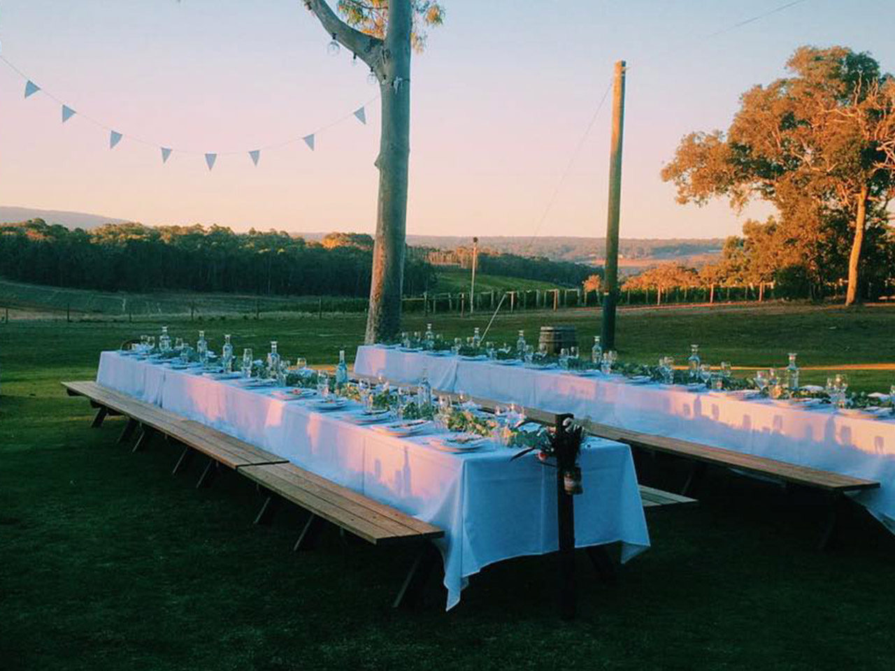 2 Long Tables Setup Under A Tree.
